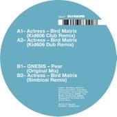 Bird Matrix (Remixes) by Actress