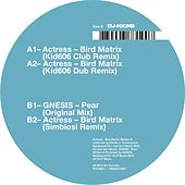 Bird Matrix (Remixes) von Actress