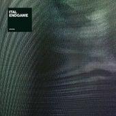 Endgame by Ital