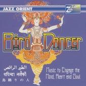 Bird Dancer by Chris Conway