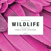 Wildlife - Unique Music Selection, Vol. 8 by Various Artists