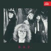B. A. P. by BAP