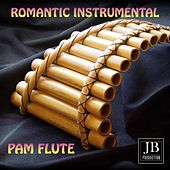 Romantic Instrumental Pam Flute by Various Artists