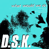 What Would We Do (Junior Boy's Own Mixes) by DSK