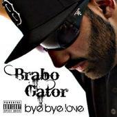 Bye Bye Love by Brabo Gator