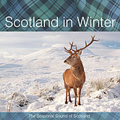 Scotland in Winter by Various Artists