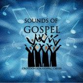 Sounds of Gospel by Croydon SDA Gospel Choir