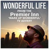 Wonderful Life (From The