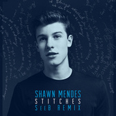 Stitches (Seeb Remix) de Shawn Mendes