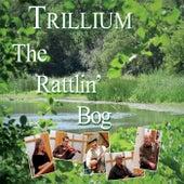 The Rattlin' Bog by Trillium