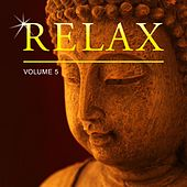 Relax, Vol. 5 by Various Artists