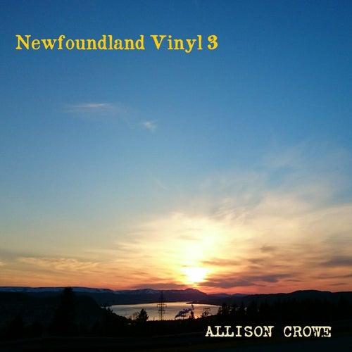 Newfoundland Vinyl 3 by Allison Crowe