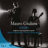 Giuliani: Sérénades, Vol. 1 (Intégrale des œuvres pour flûte et guitare) by Berten d'Hollander