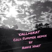 Cold Summer (Remix) by CALLmeKAT