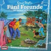 113/und das Feuer auf der Felseninsel von Fünf Freunde