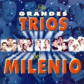 Los Grandes Trios del Milenio de Various Artists