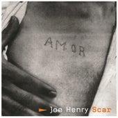 Scar by Joe Henry