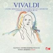 Vivaldi: L'estro Armonico, Op. 3, Concerto No. 6 in a Minor for a Violin and Strings, Rv 356 (Digitally Remastered) by Tatiana Grindenko