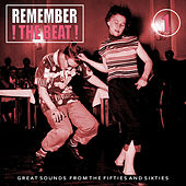 Remember the Beat, Vol. 1 by Various Artists