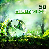 50 Study Music - Studying Music & Concentration Music for School and University Exam Study, Brain Stimulation, Improve Memory and Concentration by Various Artists