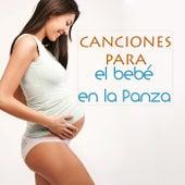 Canciones para el Bebé en la Panza - Musica para Niños y Bebes en el Vientre Materno de Various Artists