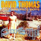 Surf's Up! de David Thomas