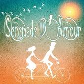 Serenade d'amour (Les meilleures chansons françaises de l'amour heureux) by Various Artists