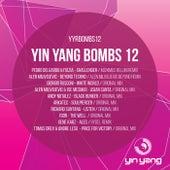Yin Yang Bombs: Compilation 12 - EP de Various Artists