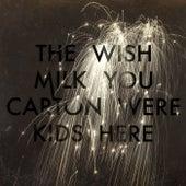Wish You Were Here de The Milk Carton Kids