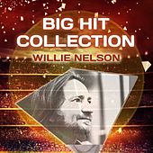Big Hit Collection de Willie Nelson