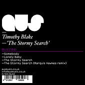 The Stormy Search by Timothy Blake