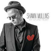 My Stupid Heart by Shawn Mullins