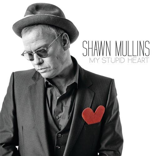 My Stupid Heart by Shawn Mullins