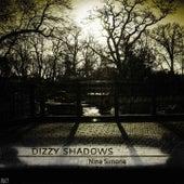 Dizzy Shadows, Vol.1 by Nina Simone