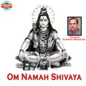 Om Namah Shivaya by Suresh Wadkar