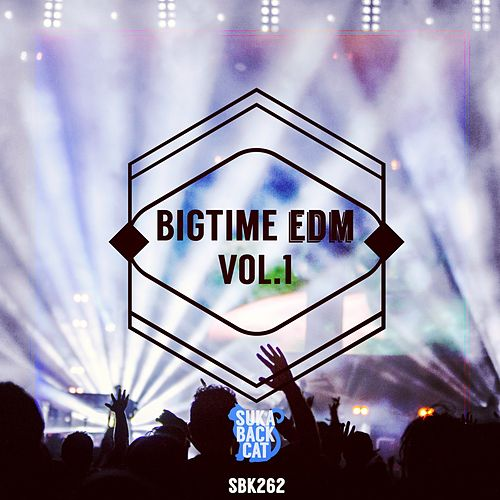 Bigtime EDM, Vol. 1 by Various Artists
