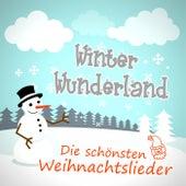 Winter Wunderland - Die schönsten Weihnachtslieder de Various Artists