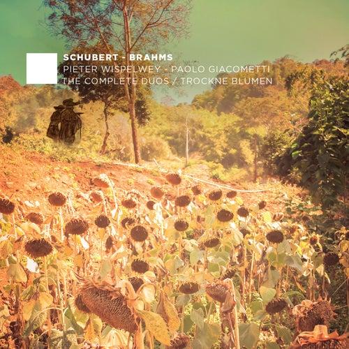 F. Schubert, J. Brahms: The Complete Duos - Trockne Blumen by Paolo Giacometti