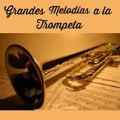 Grandes Melodías a la Trompeta by Various Artists