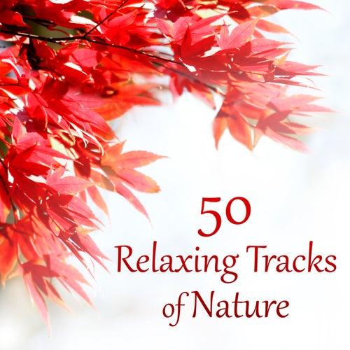 50 Relaxing Tracks of Nature – Autumn, Rain, Deep Meditation, Secret Garden, Spa Therapy, Massage, Instrumental Music, Healing Song von Dominika Jurczuk Gondek