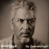 The Coincidentalist von Howe Gelb
