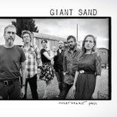 Heartbreak Pass de Giant Sand