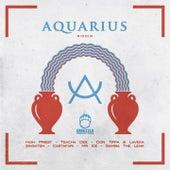 Aquarious Riddim by Various Artists
