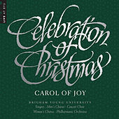 Celebration of Christmas: Carol of Joy (Live) von Various Artists