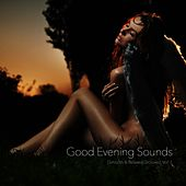 Good Evening Sounds (Smooth & Relaxed Grooves), Vol. 1 by Various Artists