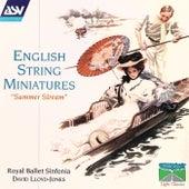 English String Miniatures by David Lloyd-Jones