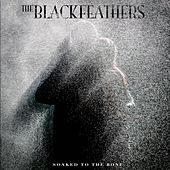The Black Feathers by The Black Feathers