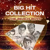 Big Hit Collection by The Beach Boys