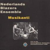 Musikanti de Various Artists