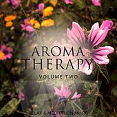 Aromatherapy, Vol. 2 (Finest Relaxing Music) by Various Artists